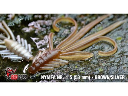 nymfy s brown silver