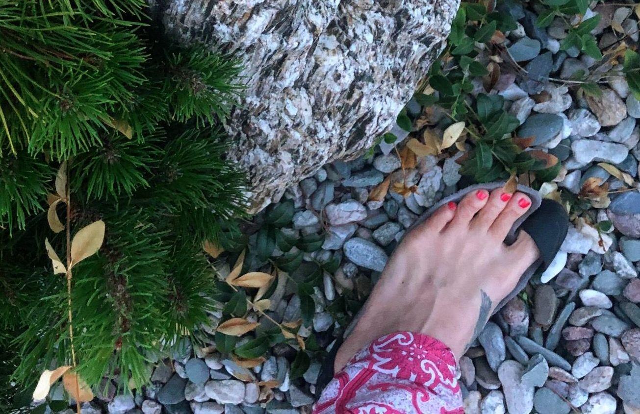 Jungle Lux na červeném koberci