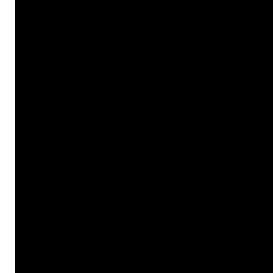 13 (black)
