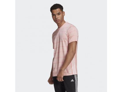 Campeon 21 Jersey Pink FT6761 21 model