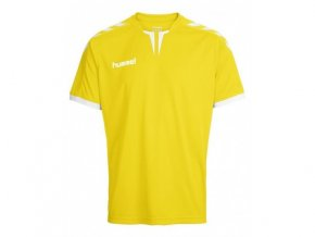 Sada dresů Hummel CORE 15 ks ( dres, šortky ) 03636-5001
