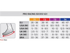 CS Socks V21