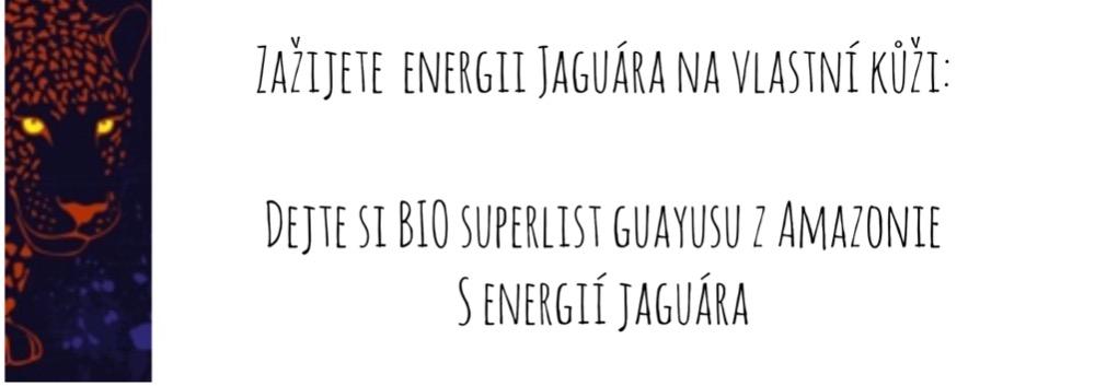 Guayusa informace