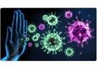 Imunita těla - okamžité posílení