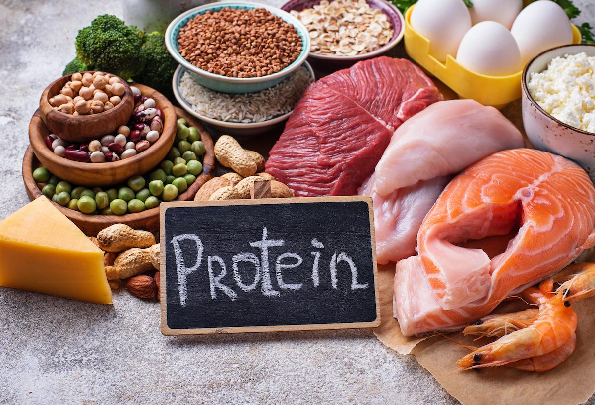 Protein - proč ho užívat a pro koho je vhodný? » INKOSPOR.cz blog