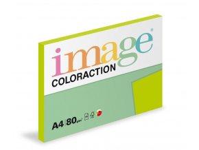 Zboží na objednávku - Papír COLORACTION A4 80g/100 Java středně zelená MA42