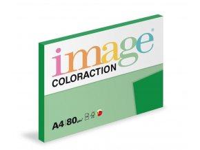 Zboží na objednávku - Papír COLORACTION A4 80g/100 Dublin tmavě zelená DG47
