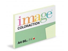 Zboží na objednávku - Papír COLORACTION A4 80g/100 Jungle pastelově světle zelená  GN27