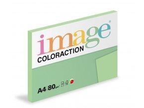 Zboží na objednávku - Papír COLORACTION A4 80g/100 Forest pastelově zelená MG28