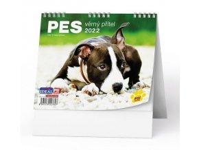 Kalendář 22S/BSL7 Pes, věrný přítel  165x135