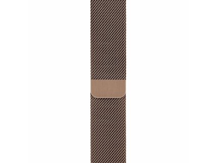 Innocent Steel Loop Apple Watch Band 42/44mm - Champagne Gold