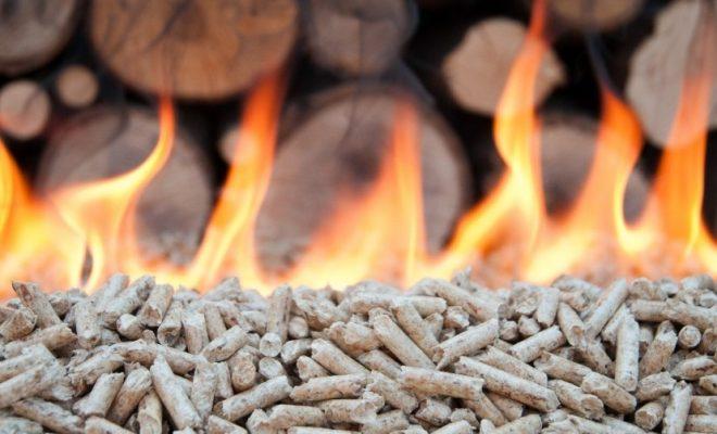 Prečo vykurovať biomasou ?