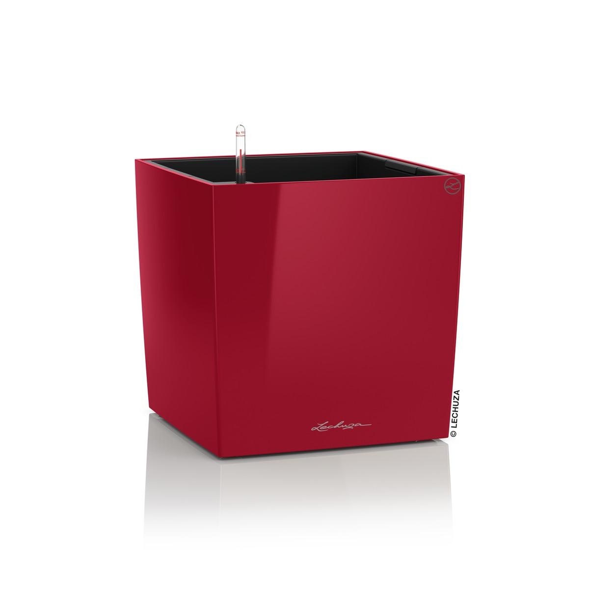 Cube Premium