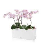 Delta 10 Lechuza stolový kvetináč