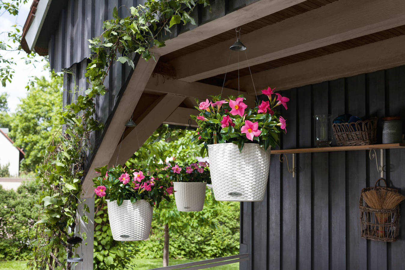 nido-cottage-lechuza-kvetinac-pladenia2