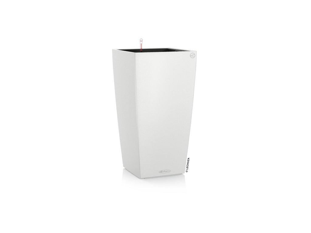 biela cubico color lechuza