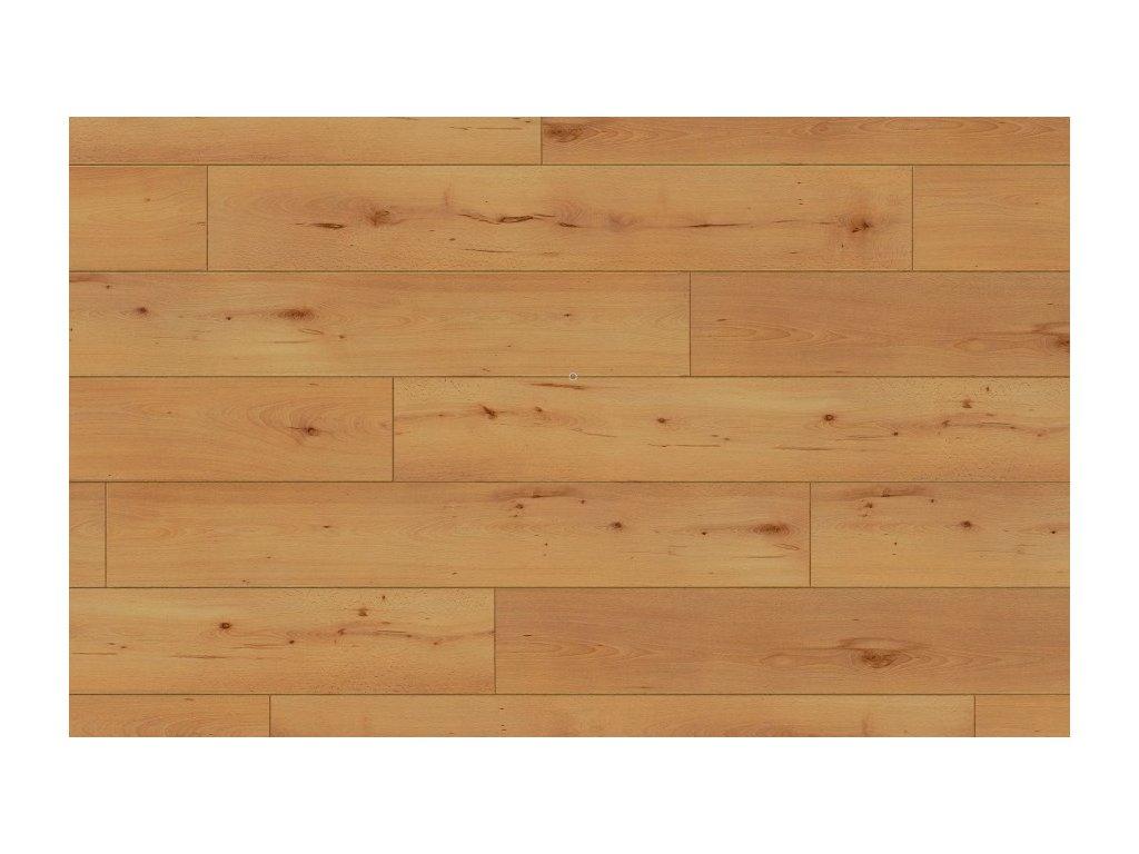 Laminátová podlaha Parador- Buk, struktura dřeva 1475605