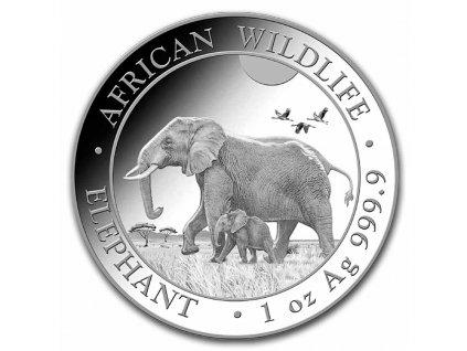 2022 somalia 1 oz silver elephant bu 237140 slab