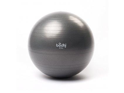 Míč na cvičení 65