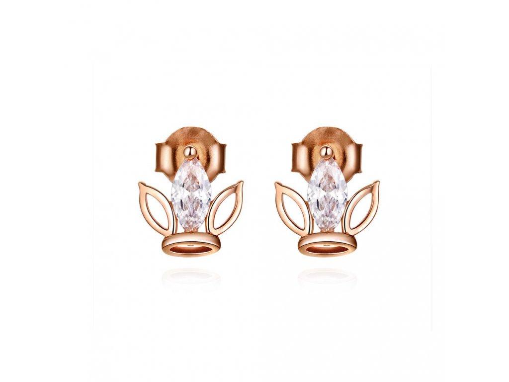 stribrne-nausnice-pecky-crown-luxury-line-ag-925-1000