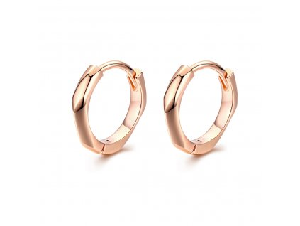 stribrne-nausnice-kruhy-geometric-line-luxury-male-ag-925-1000
