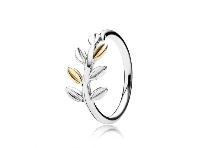 stribrny-prsten-vavrin