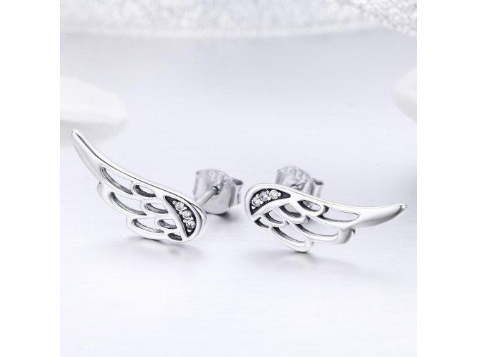 stribrne-nausnice-pecky-wings
