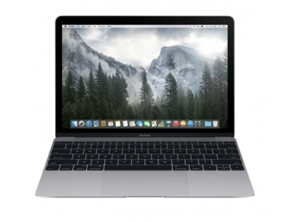 Apple MacBook 12 256 GB SSD / 8 GB Space Gray 2015