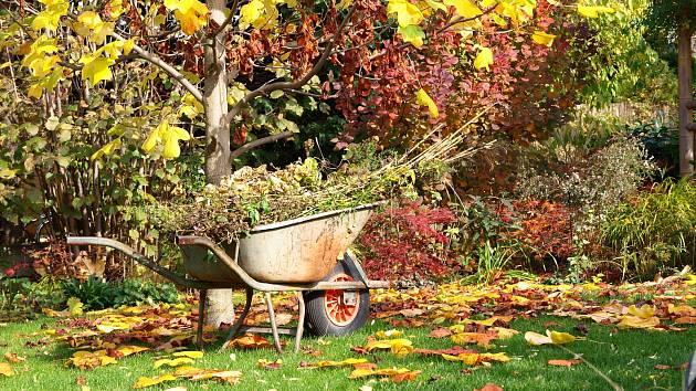 Rady a tipy pro podzimní zahradu