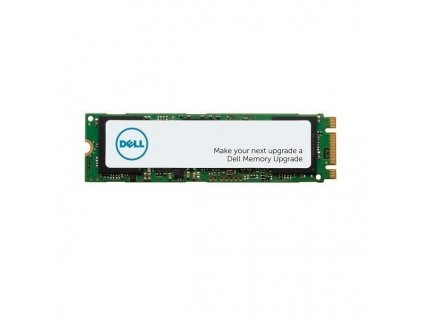 DELL disk 1TB SSD/ M.2 PCIe NVMe/ Class 40/ 2280