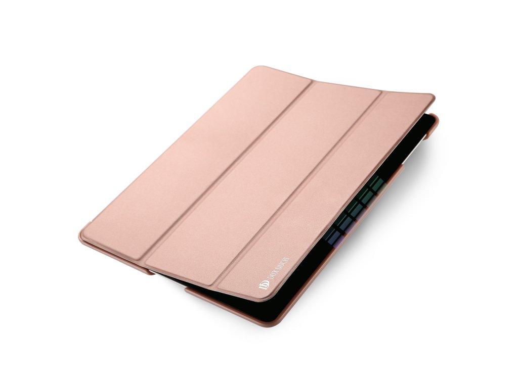Pouzdro pro iPad 2 / 3 / 4 - DuxDucis, SkinPro Rose