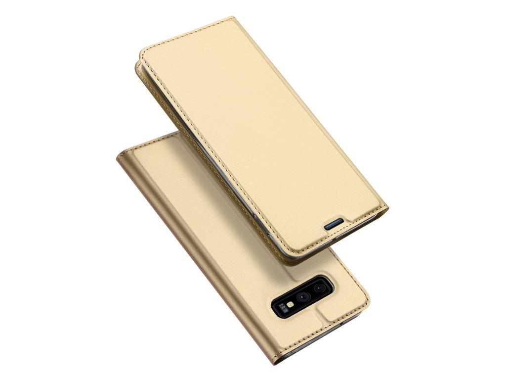 Pouzdro pro Samsung Galaxy S10E - DuxDucis, SkinPro Gold