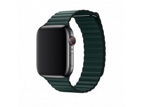 Řemínek pro Apple Watch 38mm / 40mm - Devia, LeatherLoop Forest Green