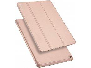 Pouzdro pro iPad Air 1 - DuxDucis, SkinPro Gold
