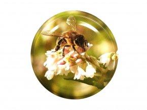 0587 včela na pohance víčko na sklenice
