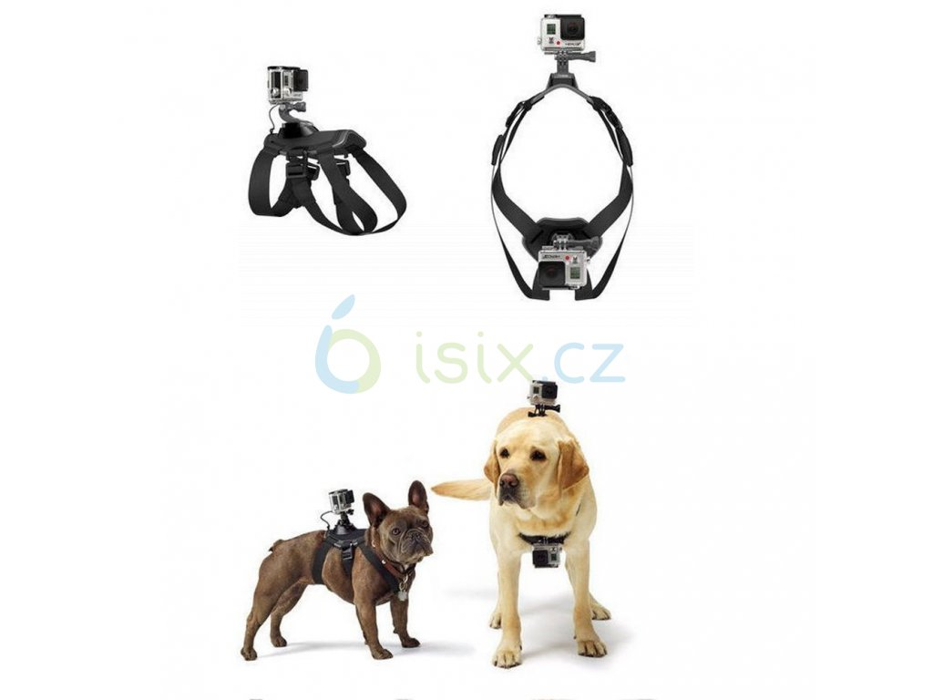 GoPro Fetch (Dog Harness) držák na psa Sjcam, Gopro, Gitup