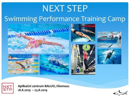 NEXT STEP SWIMMING CAMP 23019 2