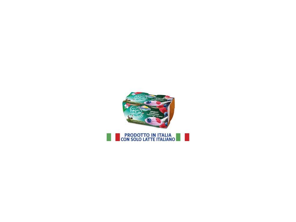 Jogurt s lesním ovocem GRANAROLO 2x125g