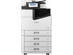 EPSON WorkForce Enterprise WF-C20600 D4TW