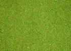 Koberce s trávou