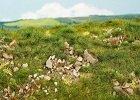 Foliáže s vápencovými kameny