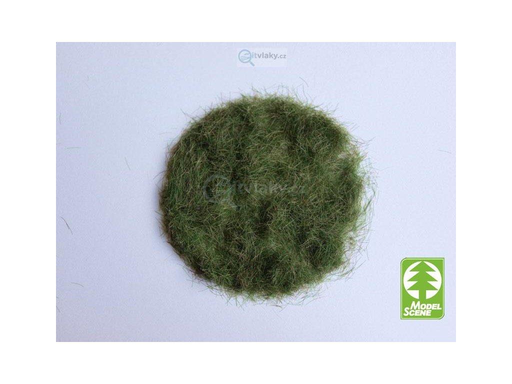 Statická tráva 4,5 mm, časné léto, 50g / Model Scene 004-03