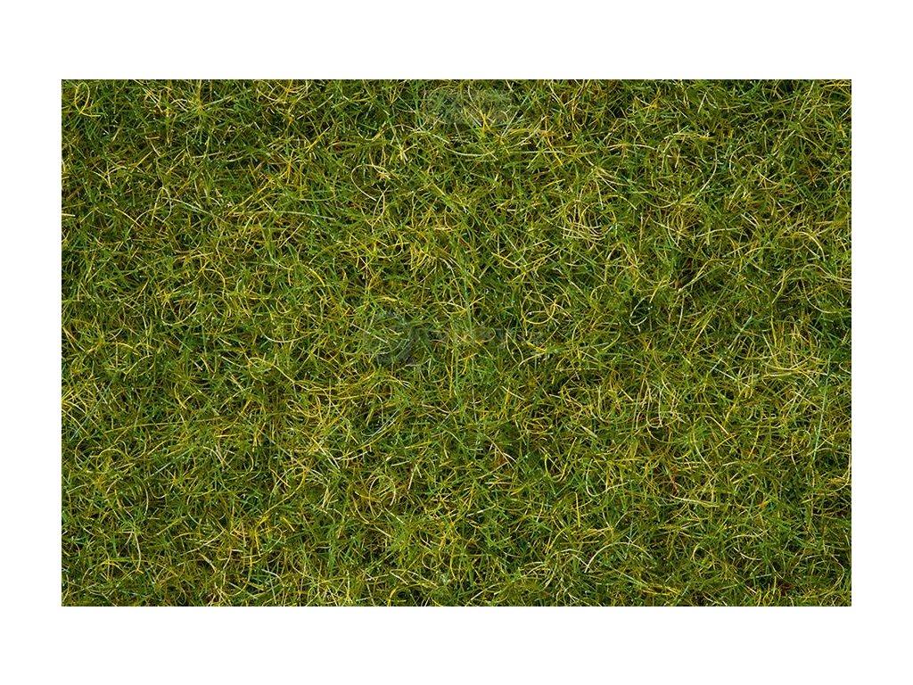 Statická tráva- letní louka / NOCH 07076