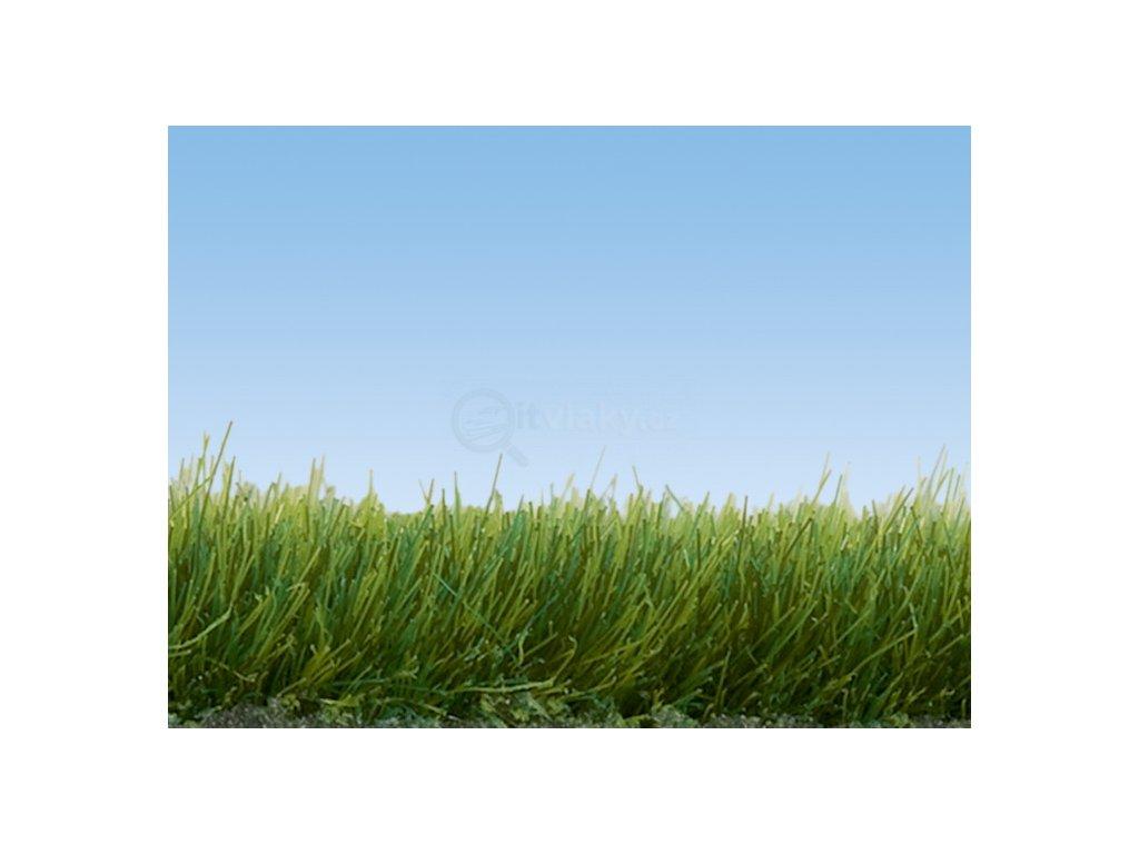 Divoká tráva - tmavě zelená BOX 100g, 6 mm, dóza / NOCH 07094