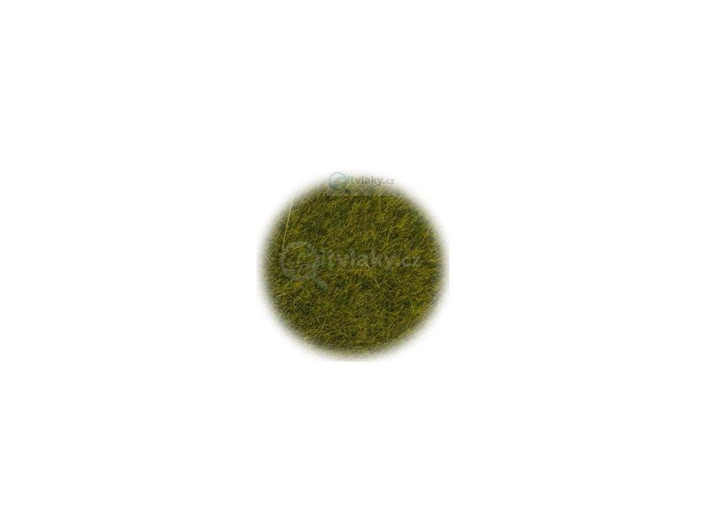 Travní posyp, statický - divoká tráva - louka 50g  / NOCH 07100