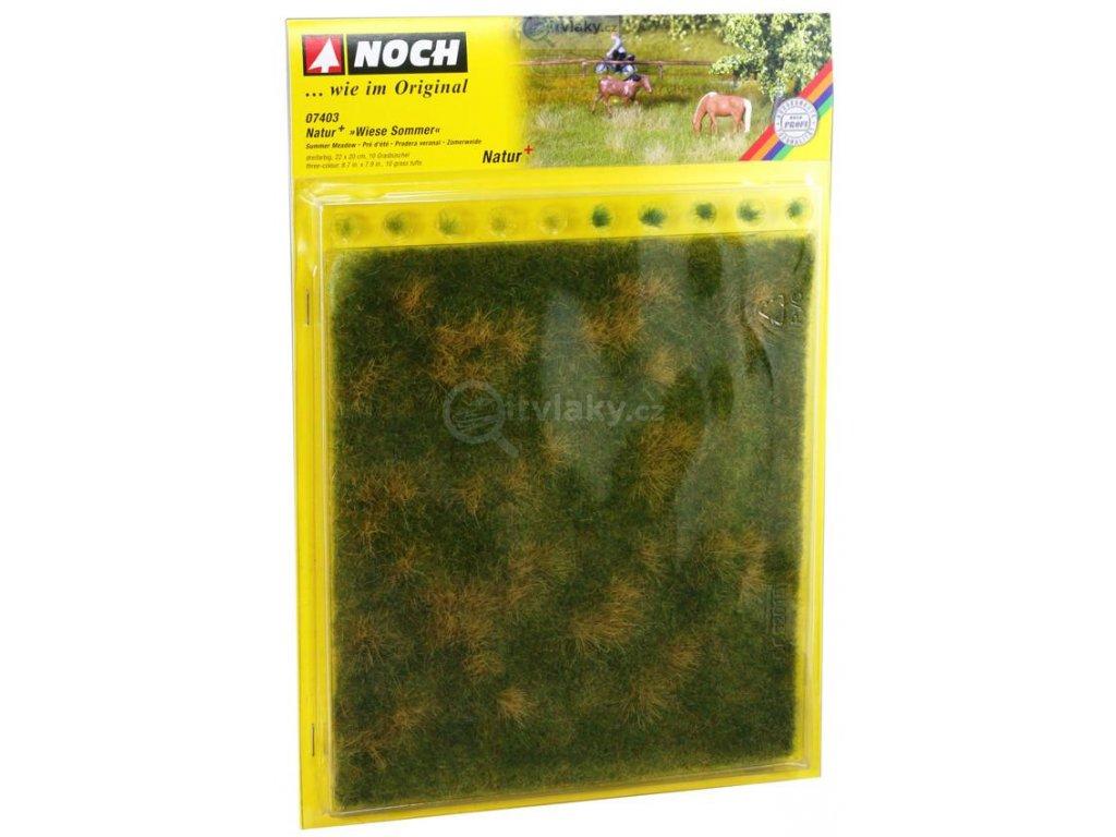 Letní louka s trsy trávy 22x20cm  / NOCH 07403