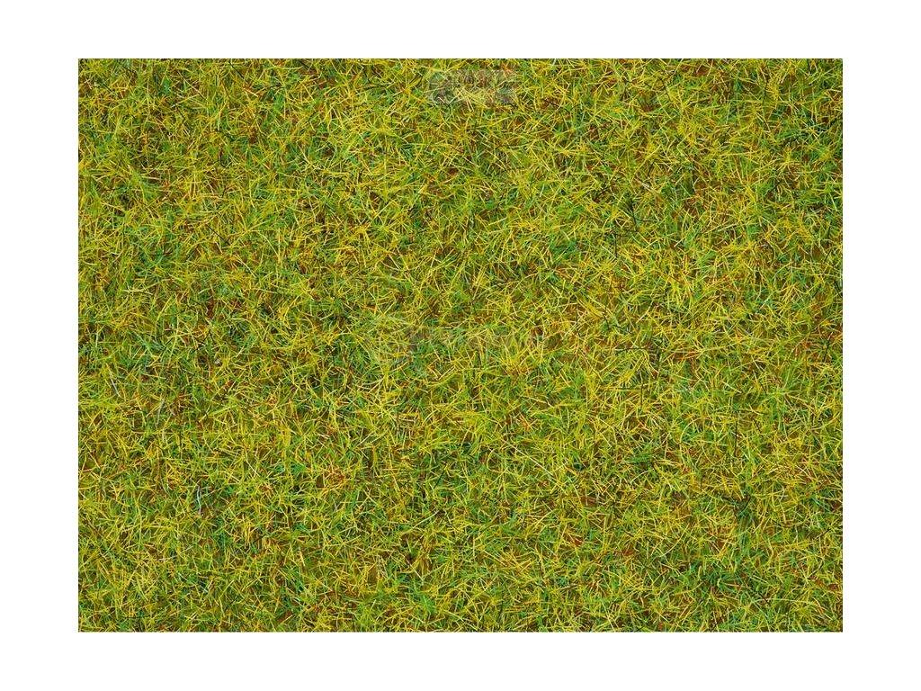 Tráva letní louka, statická BOX 120g, 2,5 mm, dóza / NOCH 08151