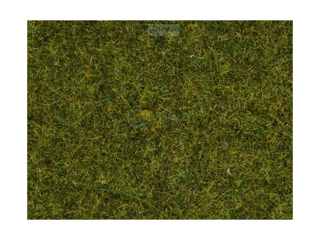 Tráva tmavě zelená BOX 120g, 2,5 mm, dóza / NOCH 08152