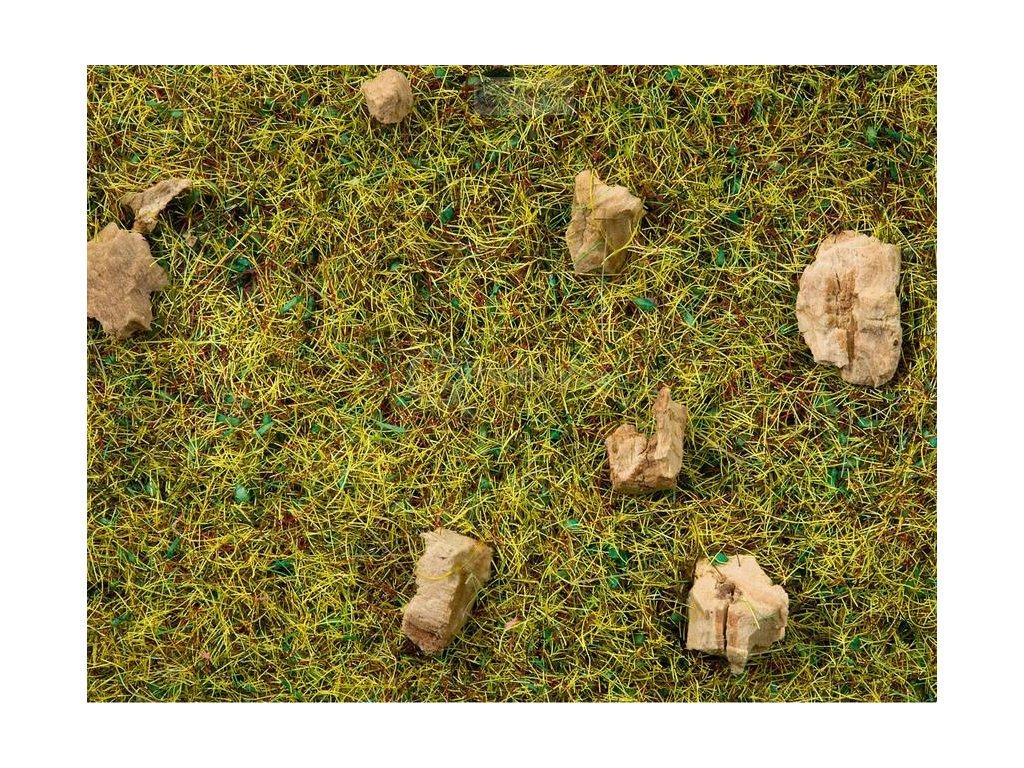 Travní posyp - kamenitá horská louka / NOCH 08360