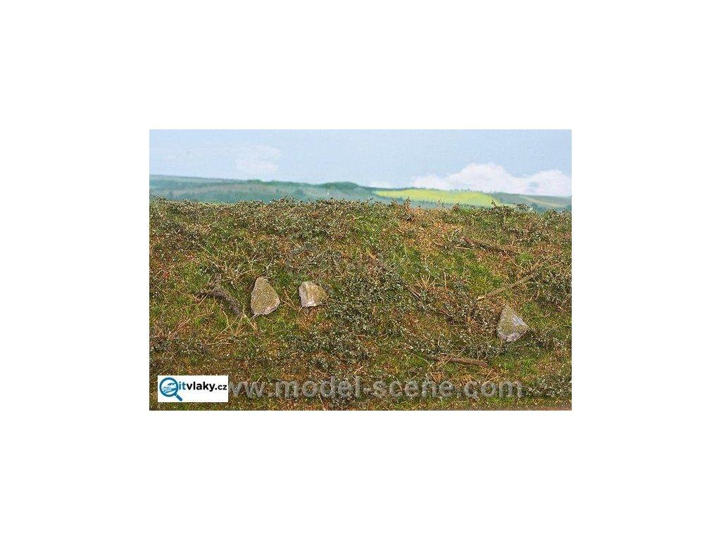 Lesní podrosty - časné léto / Model Scene F602